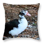 White Chested Muscovy Throw Pillow