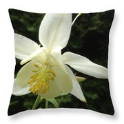 White Columbine Throw Pillow