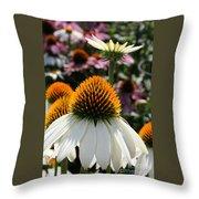 White Cone Flower Throw Pillow