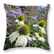White Coneflowers Throw Pillow