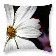 White Coreopsis Throw Pillow