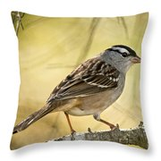 White-crowned Sparrow Pictures 63 Throw Pillow