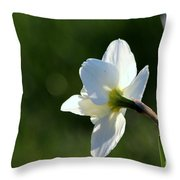 White Daffodil Rear Profile Throw Pillow