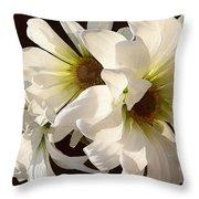 White Daisies In Sunshine Throw Pillow