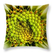 White Daisy Center Throw Pillow