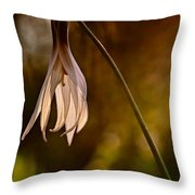 White Dogtooth Violet Throw Pillow