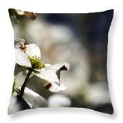 White Dogwood Flowers Throw Pillow