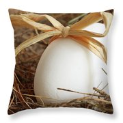 White Egg With Bow On Straw  Throw Pillow by Sandra Cunningham