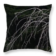 White Egret   #9120 Throw Pillow