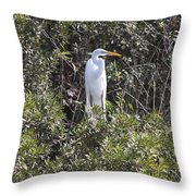 White Egret In The Swamp Throw Pillow
