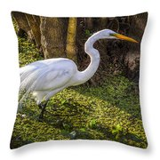 White Egret On The Hunt Throw Pillow