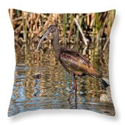 White-faced Ibis In The Wetlands Throw Pillow