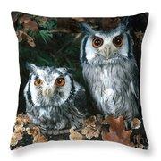 White Faced Scops Owl Throw Pillow by Hans Reinhard