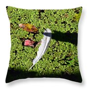 White Feather Lost Throw Pillow