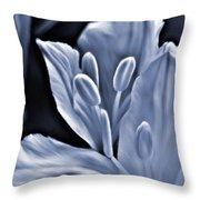White Feathers Throw Pillow