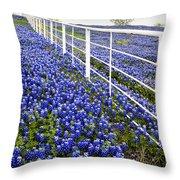 White Fence - Blue Bonnets Throw Pillow