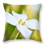 White Flower 2 Throw Pillow