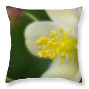 White Flower And Swirls Throw Pillow