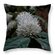 White Flower Throw Pillow