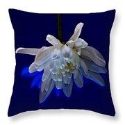 White Flower On Dark Blue Background Throw Pillow