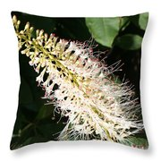White Flower Panicle Throw Pillow