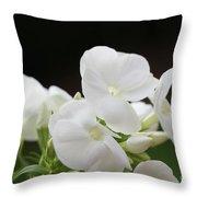 White Flowers 3 Throw Pillow