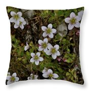 White Flowers And Moss Throw Pillow