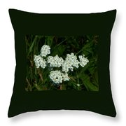 White Flowers In Green Field Throw Pillow