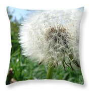 White Fluffy Throw Pillow