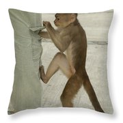 White-fronted Capuchin Checking Pocket Throw Pillow
