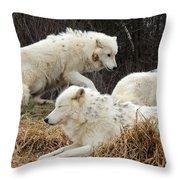 White Furs Throw Pillow