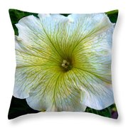 White Garden Petunia Throw Pillow
