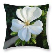 White Geranium Throw Pillow