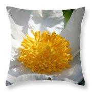 White Glove Throw Pillow