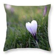 White Heart Throw Pillow