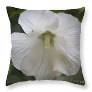 White Hibiscus Squared Throw Pillow