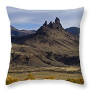 White Horse And Fall Colors   #0354 Throw Pillow