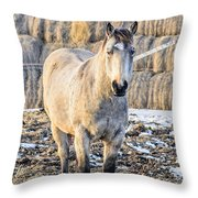 White Horse And Hey Throw Pillow