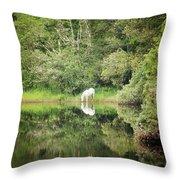 White Horse Drinking Water Throw Pillow