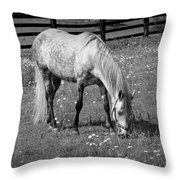White Horse In A Pasture Among Daisy Flowers Throw Pillow