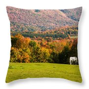 White Horses Grazing With View Of Green Mtns Throw Pillow