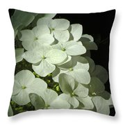 White Hydrangeas Throw Pillow