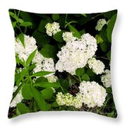 White Hydrangia Beauty Throw Pillow