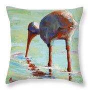 White Ibis  Everglades Bird  Throw Pillow
