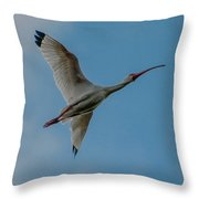 White Ibis In Flight Throw Pillow