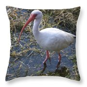 White Ibis In The Swamp Throw Pillow