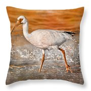 White Ibis Stroll Throw Pillow