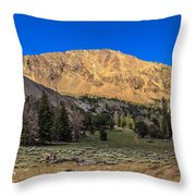 White Knob Mountain Peak Throw Pillow