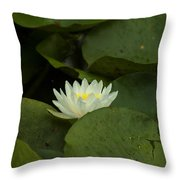 White Lilly Throw Pillow
