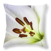 White Lily Close Up Throw Pillow